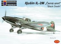 Ił-2M Black Death - Image 1